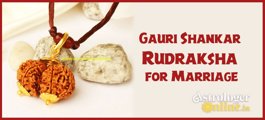 Gauri Shankar Rudraksha for Marriage